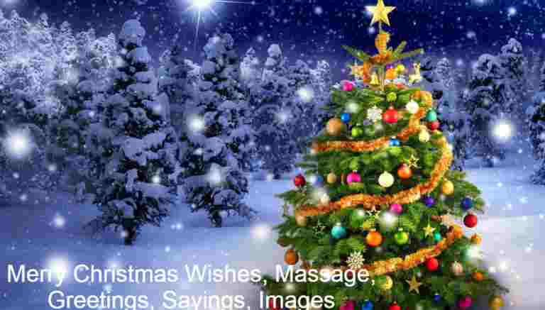 Merry Christmas Wishes, Massage, Greetings, Sayings, Images And Pictures