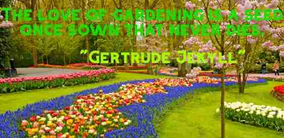 Gardening Quotes On Vegetable, Flower, Spring, Life, Love