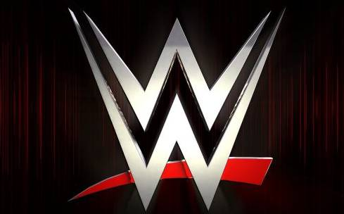 WWE Quotes On Superstars, Success, Wrestlers, Attitude